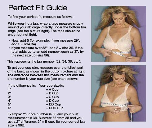 Playtex Bra Sizing Chart - Beauty, Makeup and More